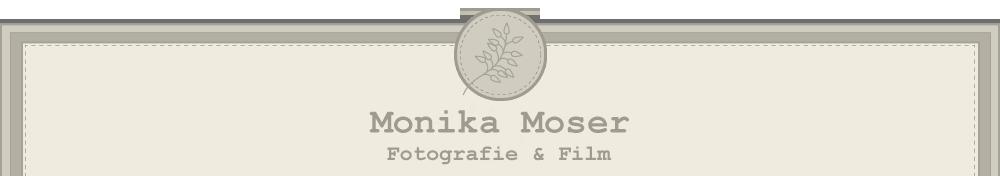 Hochzeitsfotografie & Familienfotografie Schweiz logo